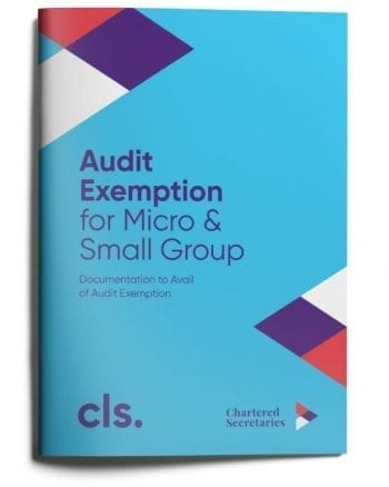 audit exemption for micro and small group